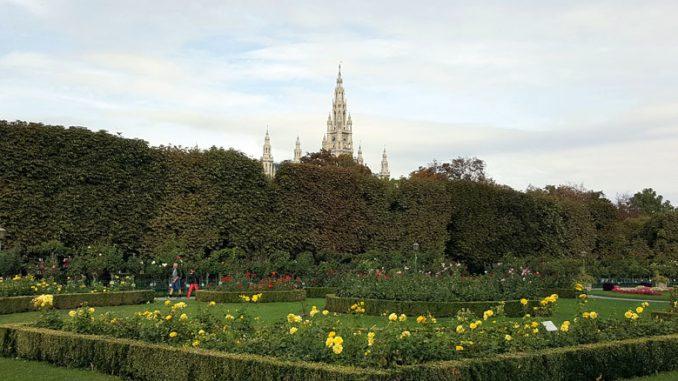 Народный сад. Фото автора
