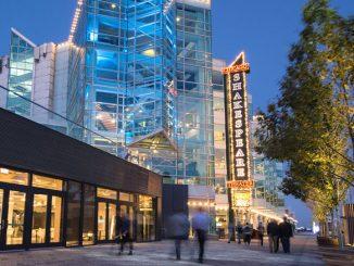 Чикагский шекспировский театр. Фото - Абел Арчинега